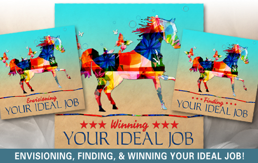Visualize, find and land your ideal job