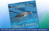 Swim with the dolphins in this guided meditation.