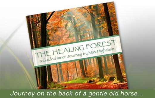 Healing guided meditation.