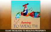Visualize Wealth